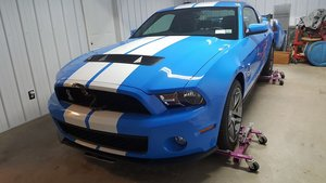 2010 Ford Mustang SVT Shelby GT500 (Phelps, NY) $39,900 obo For Sale