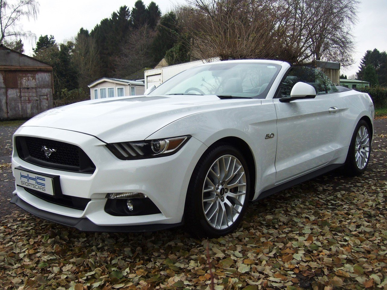 2017 Magnificent Mustang! For Sale (picture 2 of 6)