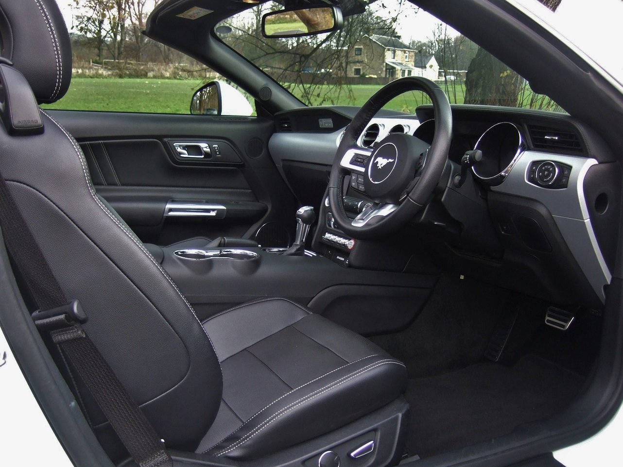 2017 Magnificent Mustang! For Sale (picture 5 of 6)