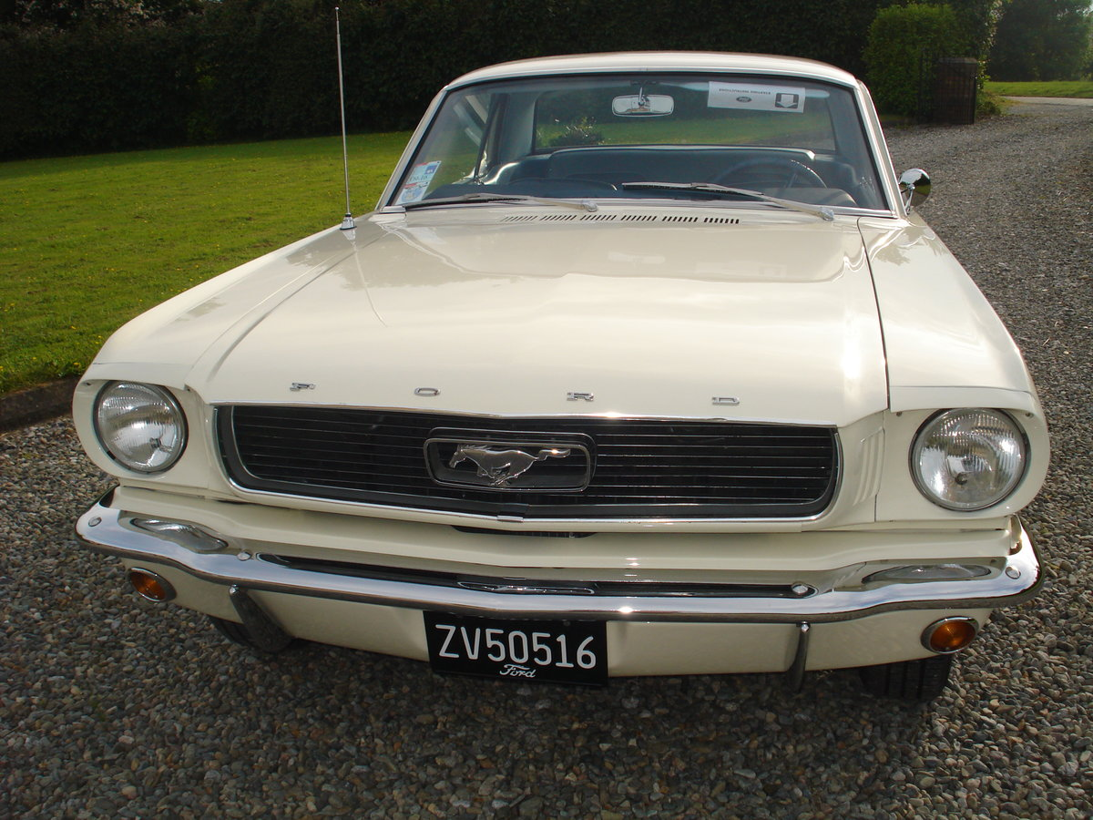 1966 Ford mustang manual, straight six. 3.3 cid. For Sale (picture 2 of 6)