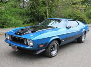 1973 Ford Mustang Fastback Mach 1  For Sale