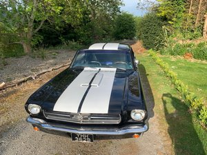 Black Ford Mustang Willwood Discs 289 V8