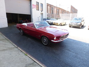 1967 Ford Mustang 289 V8 Convt Nice Driver For Sale