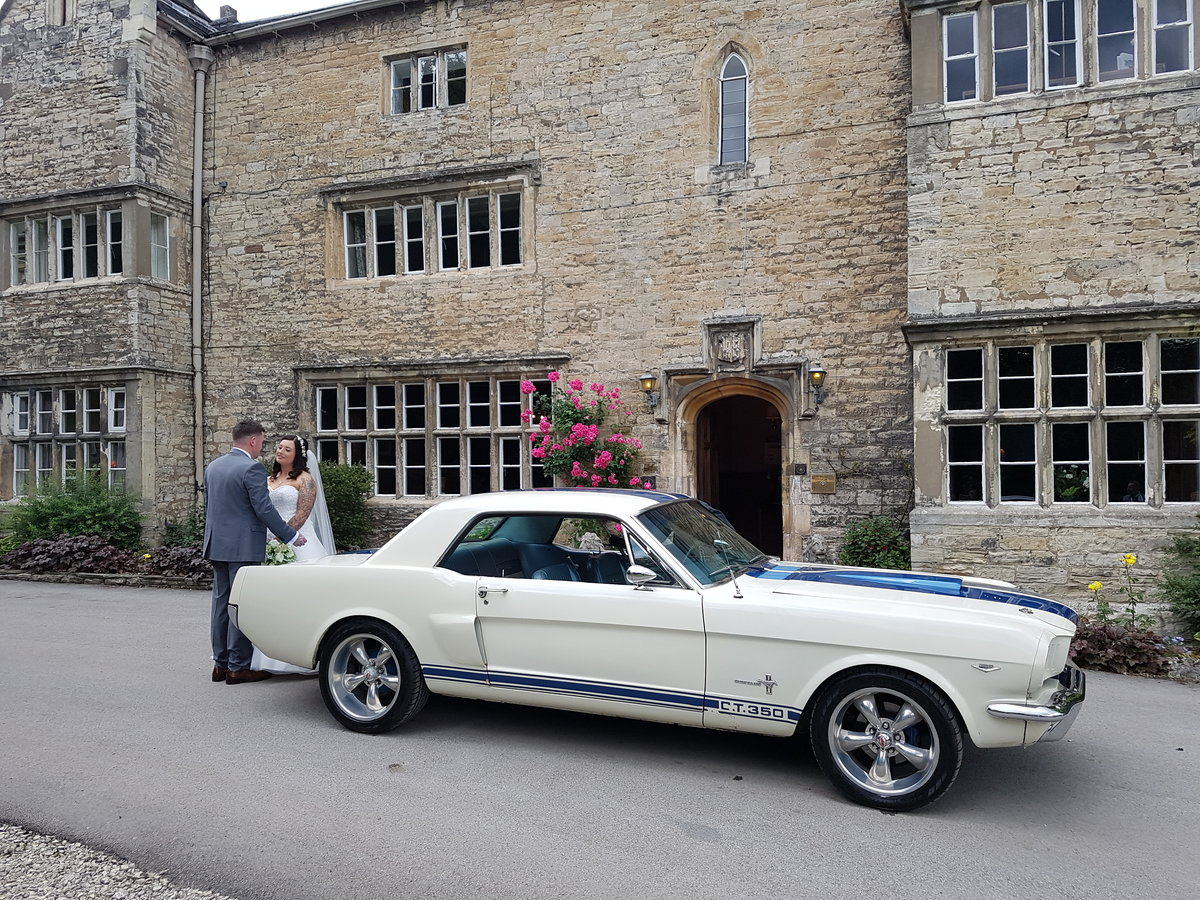 1966 Ford Mustang GT350 For Hire (picture 1 of 2)