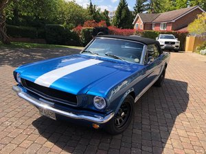 1966 Ford Mustang 289 C engine restored