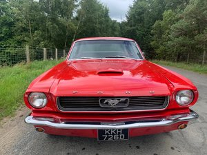 Ford Mustang 289 V8 Rebuilt Everything Disc Brakes