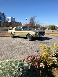 1967 Ford Mustang Coupe  For Sale by Auction