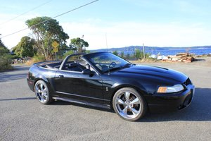 1999 Ford Mustang Cobra For Sale by Auction