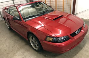 2002 Mustang Gt Premium Convertible 11300 miles For Sale