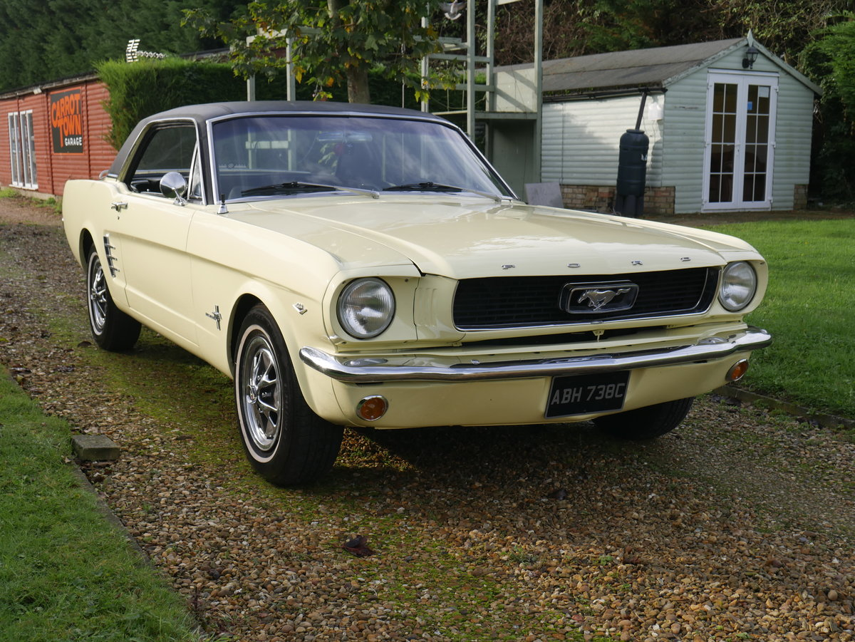 1965 ford Mustang 289 V8 Manual ** Fully Restored Manual Mus For Sale (picture 2 of 6)