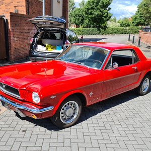 Picture of 1965 Ford Mustang GT 289 V8 4 speed manual