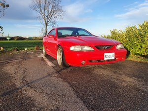 Picture of 1997 Svt cobra ford mustang