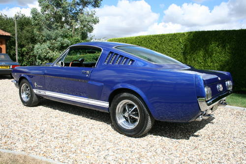 1966 Ford Mustang Fastback Wanted  Wanted (picture 2 of 6)