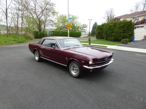 1966 Ford Mustang 289 V8 Nicely Presentable - SOLD (picture 1 of 6)