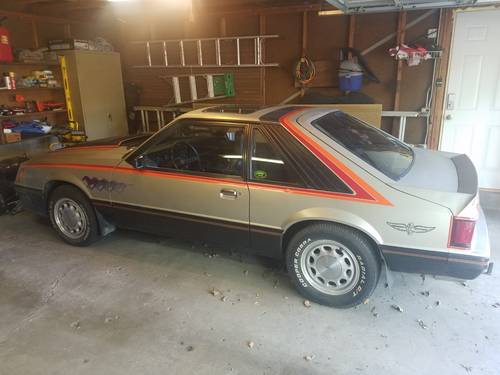 1979 Ford Mustang Pace Car For Sale (picture 1 of 6)