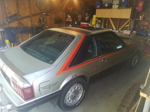 1979 Ford Mustang Pace Car For Sale (picture 2 of 6)