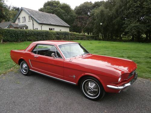 1964 1/2 FORD MUSTANG COUPE POPPY RED SIMPLY STUNNING!! SOLD (picture 1 of 6)