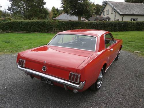 1964 1/2 FORD MUSTANG COUPE POPPY RED SIMPLY STUNNING!! SOLD (picture 2 of 6)