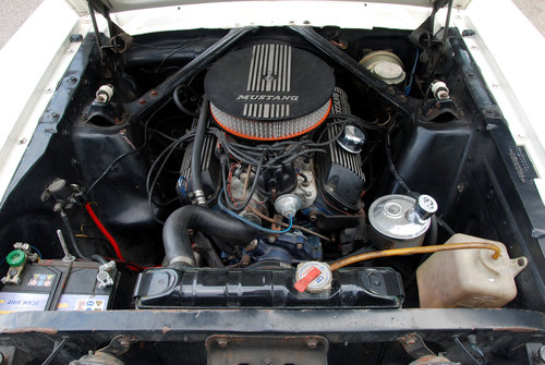 1966 Ford Mustang 289cui / 4,7 l LHD For Sale (picture 5 of 6)