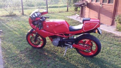 1989 SATURNO BIALBERO 500 For Sale (picture 3 of 6)