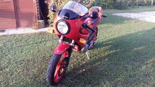 1989 SATURNO BIALBERO 500 For Sale (picture 4 of 6)