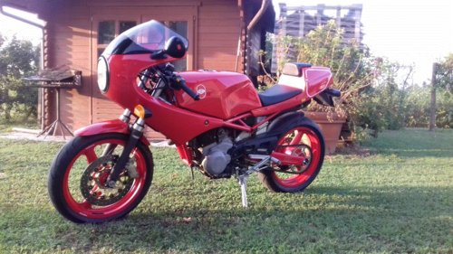 1989 SATURNO BIALBERO 500 For Sale (picture 5 of 6)