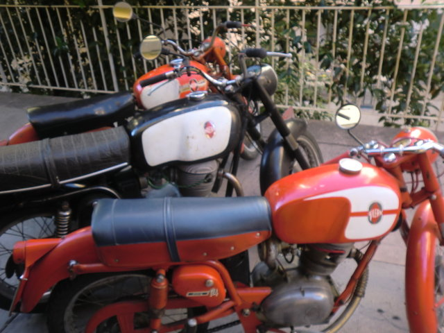 Gilera 300 extra 1967 twin For Sale (picture 5 of 5)