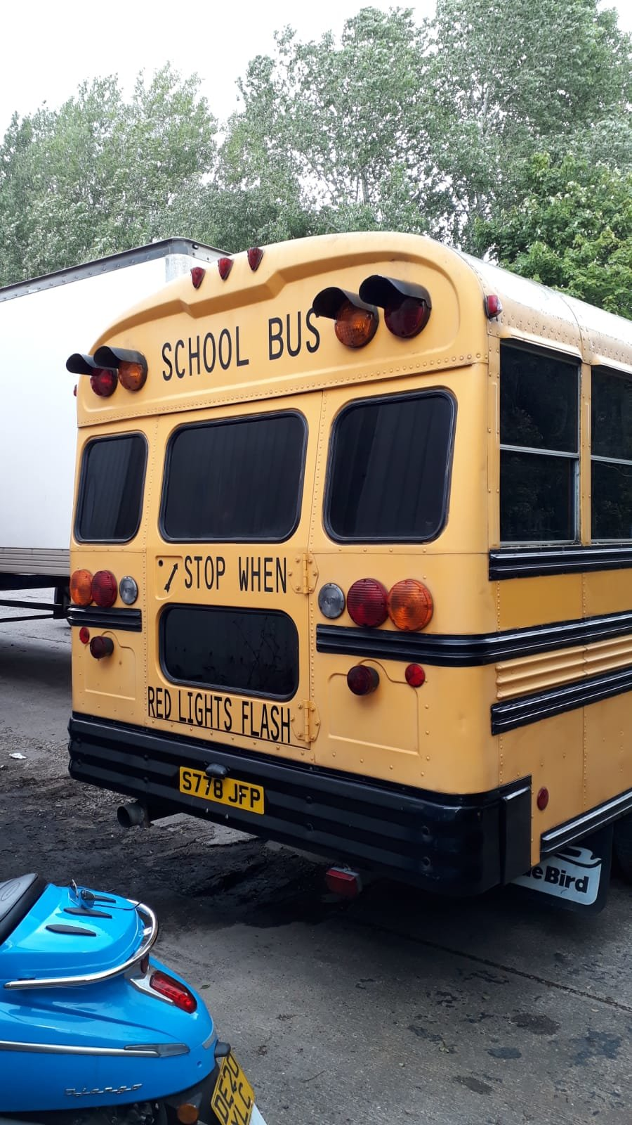 1999 GMC Bluebird American School Bus  For Sale (picture 4 of 6)