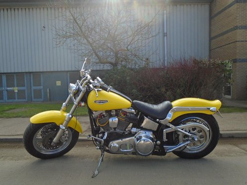 Customised 1988 Harley Softail  For Sale (picture 2 of 6)