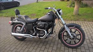 harley davidson sturgis 1981 For Sale