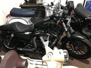 2014 Harley Davidson sportster Matt black etd  (64) reg  For Sale