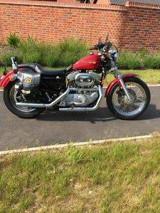 1995 Harley Davidson 883 Sportster Hugger