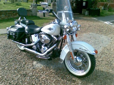 1900 harley fatboy softail etc anything  For Sale (picture 5 of 6)