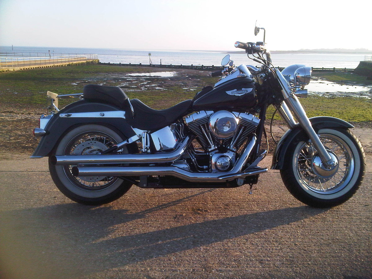 1900 harley fatboy softail etc anything  For Sale (picture 6 of 6)