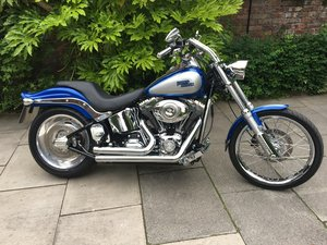 Picture of 2009 Harley Davidson FXSTC  Softail Custom, Show Condition SOLD