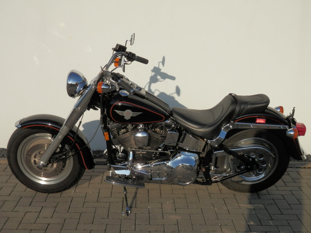1994 Harley Evo Fat Boy Terminator SOLD (picture 3 of 6)