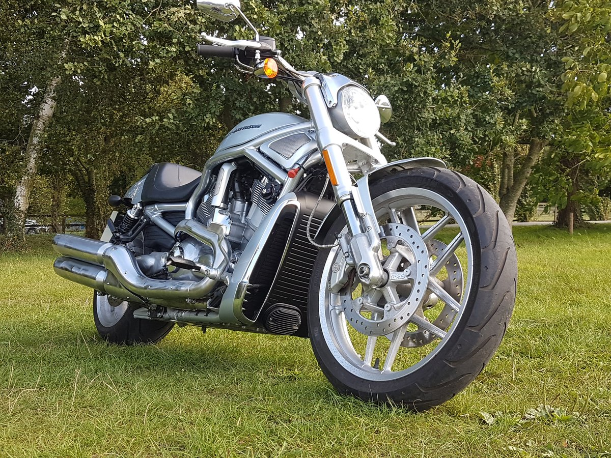 Harley Davidson Night-Rod Special 2012 Just 350 Miles VRSCDX For Sale (picture 2 of 6)