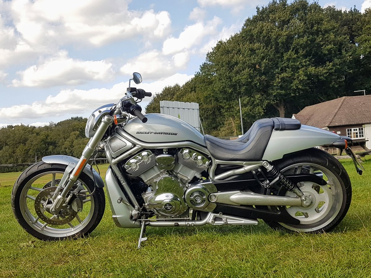 Harley Davidson Night-Rod Special 2012 Just 350 Miles VRSCDX For Sale (picture 3 of 6)
