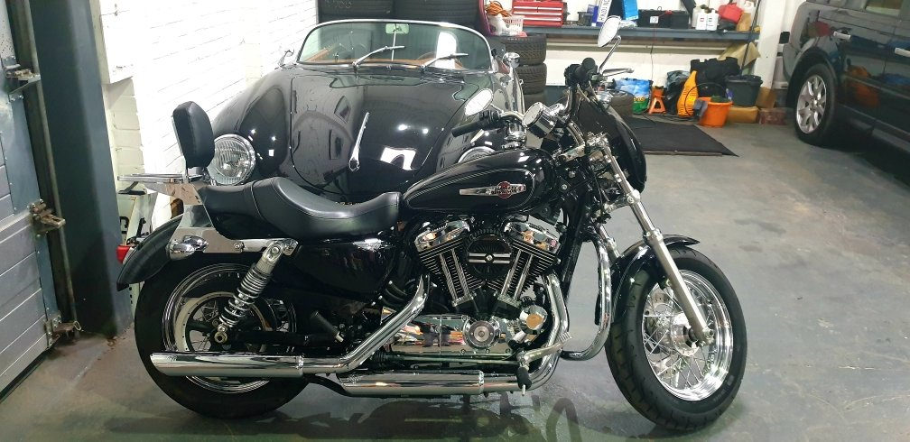 2016 Harley-Davidson XL1200C Sportster 1200 Custom, Stage On For Sale (picture 2 of 6)