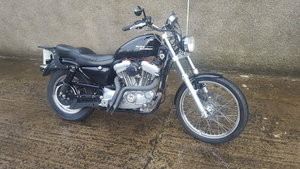 Picture of 1998 Harley Davidson XL883 SOLD