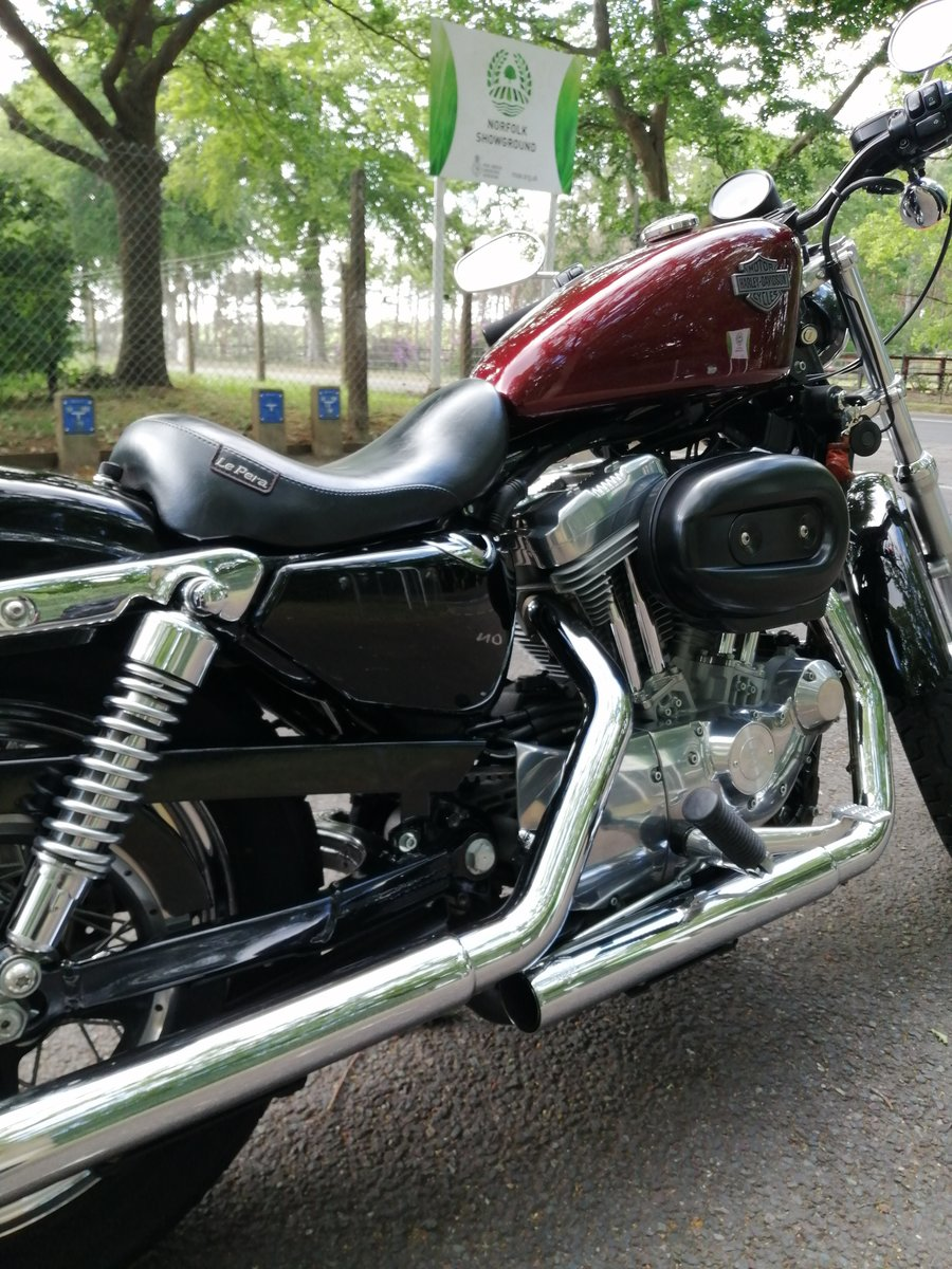 2005 Harley Davidson 883.Mint cond.Low milage For Sale (picture 1 of 6)