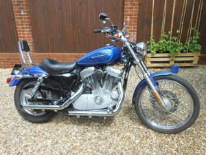 Harley davidson xl883c sportster