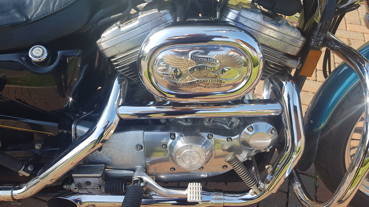 1995 Harley Davidson 883 with loads of extras may P/X For Sale (picture 1 of 6)
