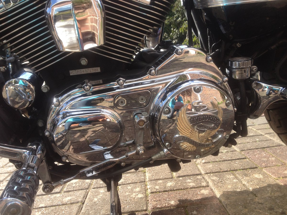 2005 Harley 1200cc Sportster For Sale (picture 3 of 6)