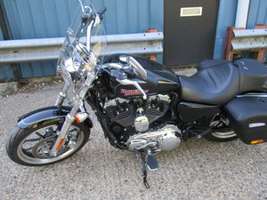 Picture of 2016 Harley Davidson Sportster XL1200T Low For Sale
