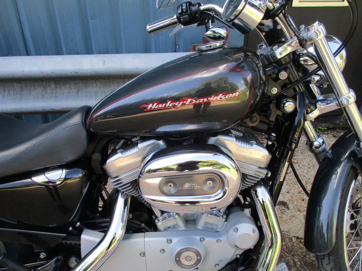 Harley Davidson XL883 Custon 2008 9kmiles For Sale (picture 2 of 6)