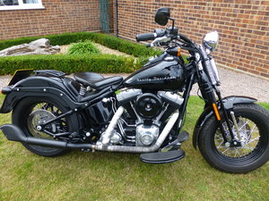 2011 Harley Cross Bones