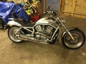 Harley Davidson v rod free uk delivery