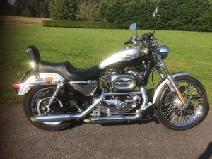 Picture of 2003 Harley Davidson XL1200 Sportster 100th Anniversary