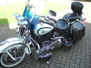 Harley FLSTS Springer